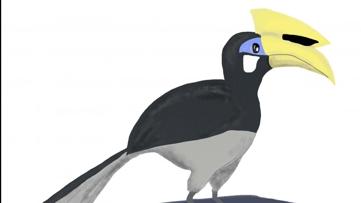 Hornbill! - student project