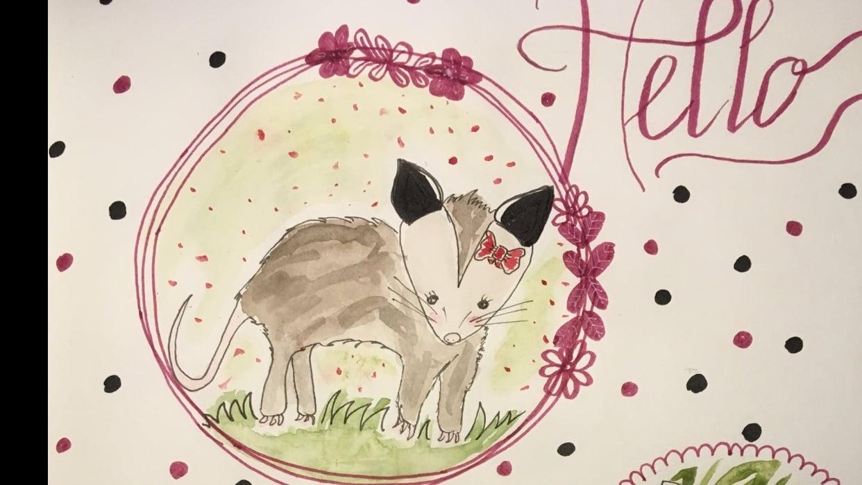 Cute opossum - student project