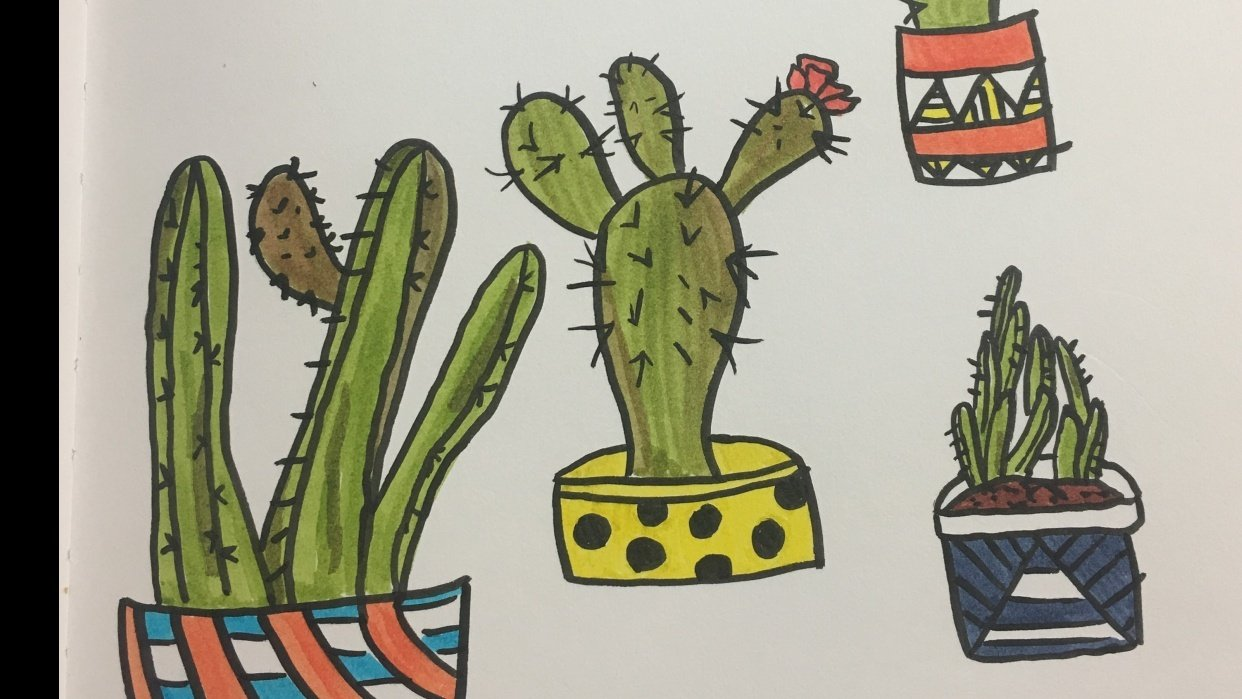 Cacti love - student project