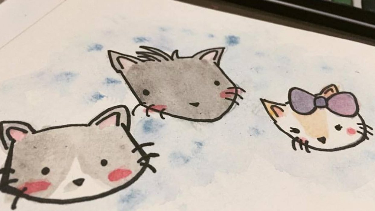 Cirrus, Nimbus and Troy - student project