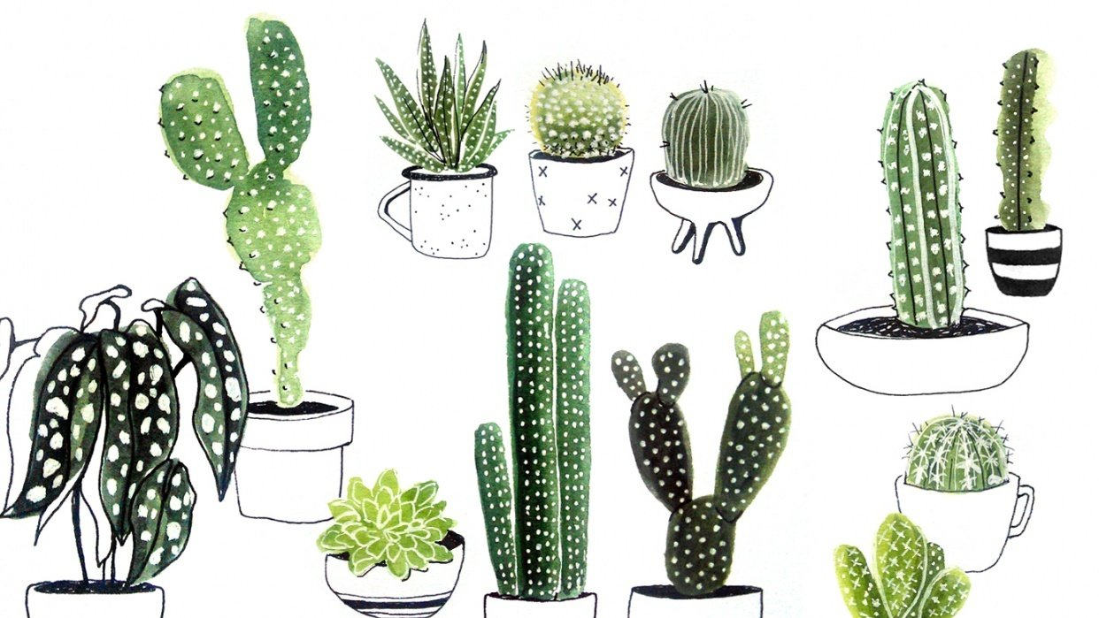 Sea Creatures & Cacti - student project