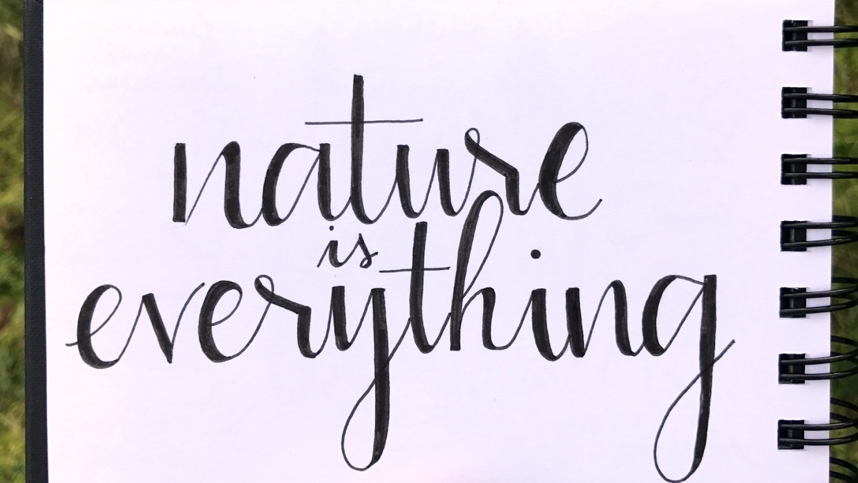 Nature is everything - student project