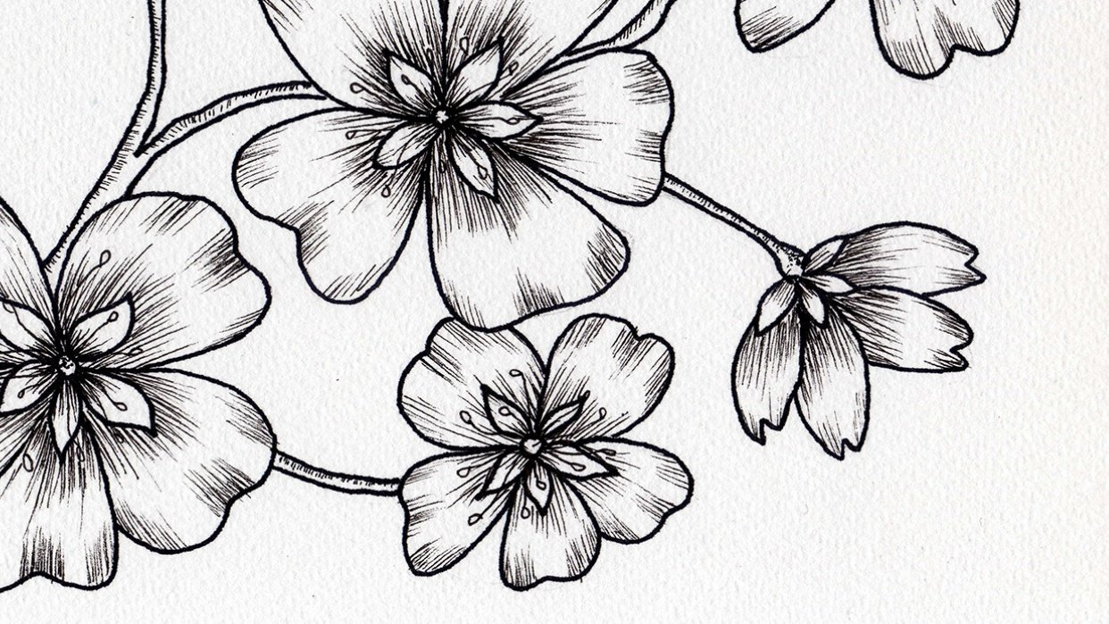 Ink blossoms - student project