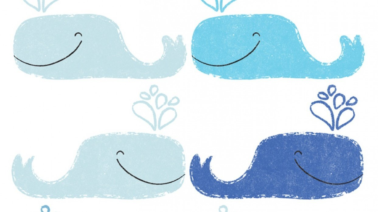 Blue Whales - student project