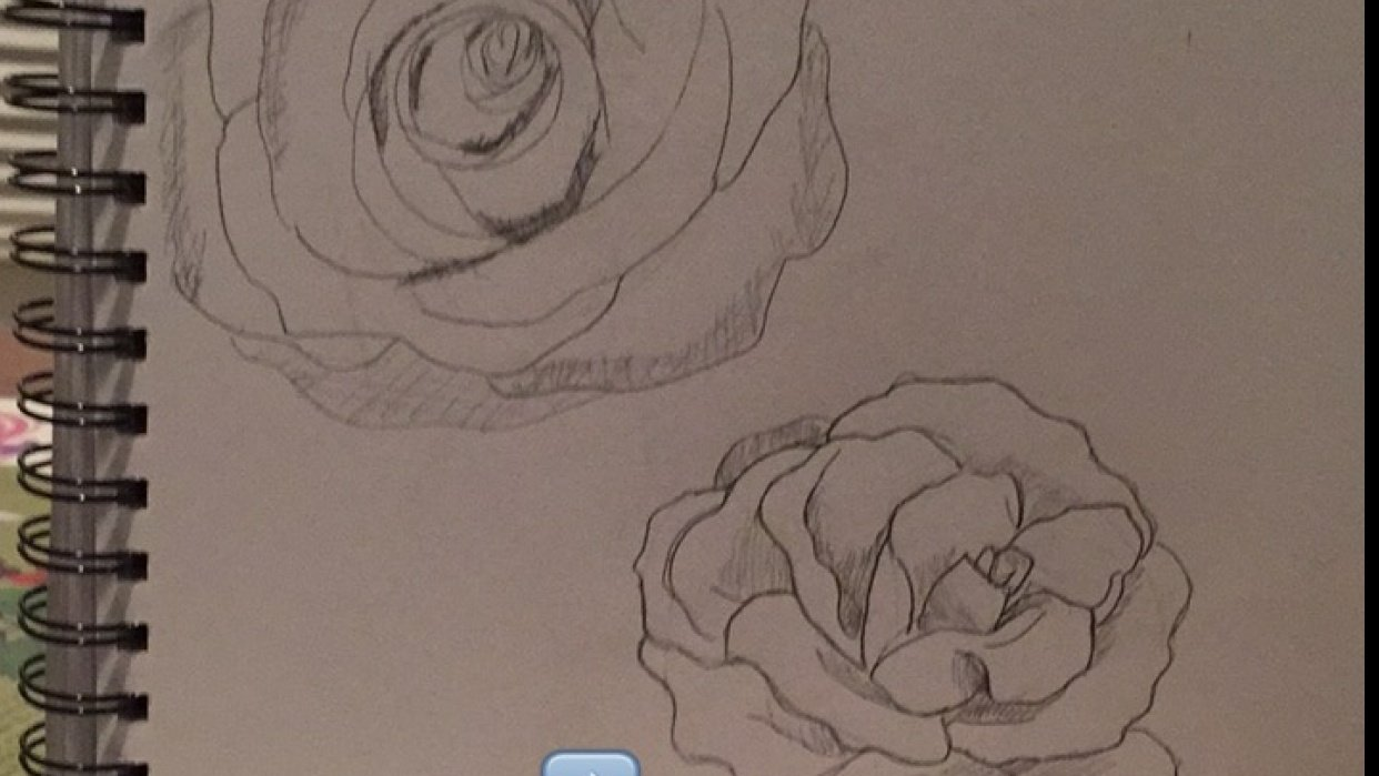 Roses! - student project