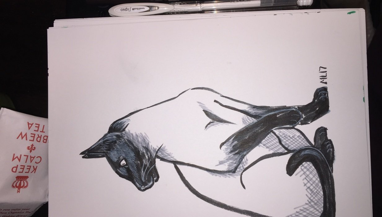 Inking a cat - student project
