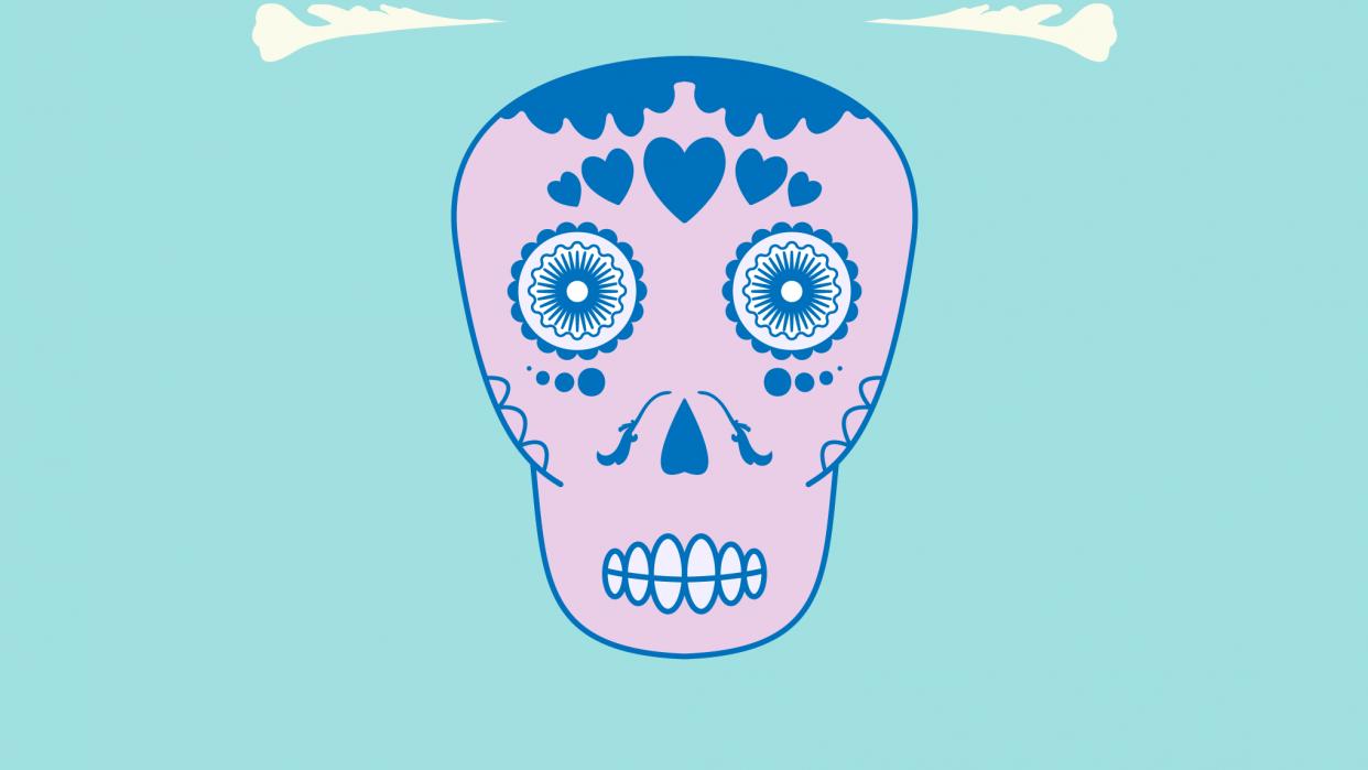 skull - student project