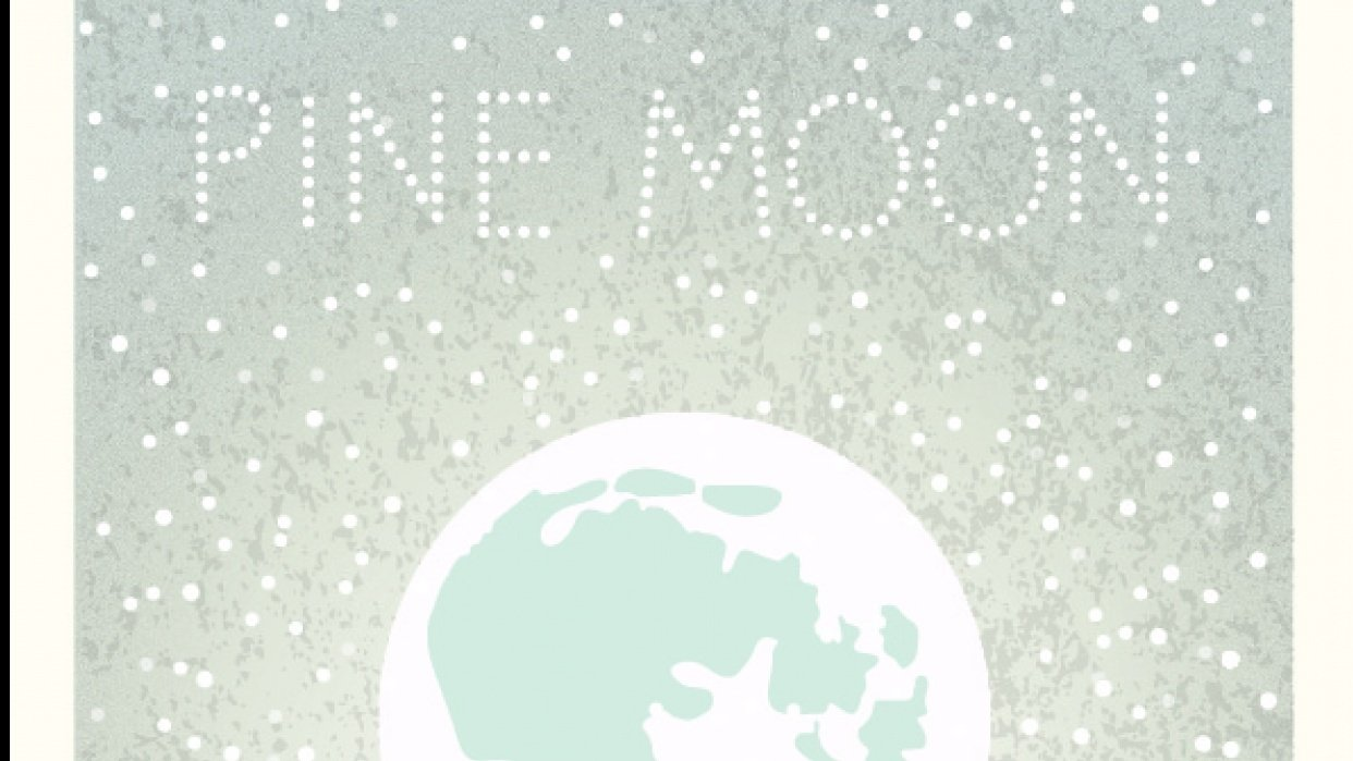 Pine moon - student project