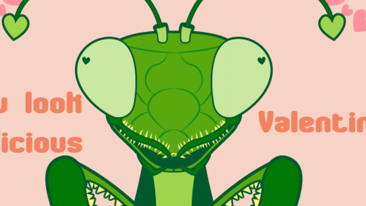 Mantis Valentine - student project