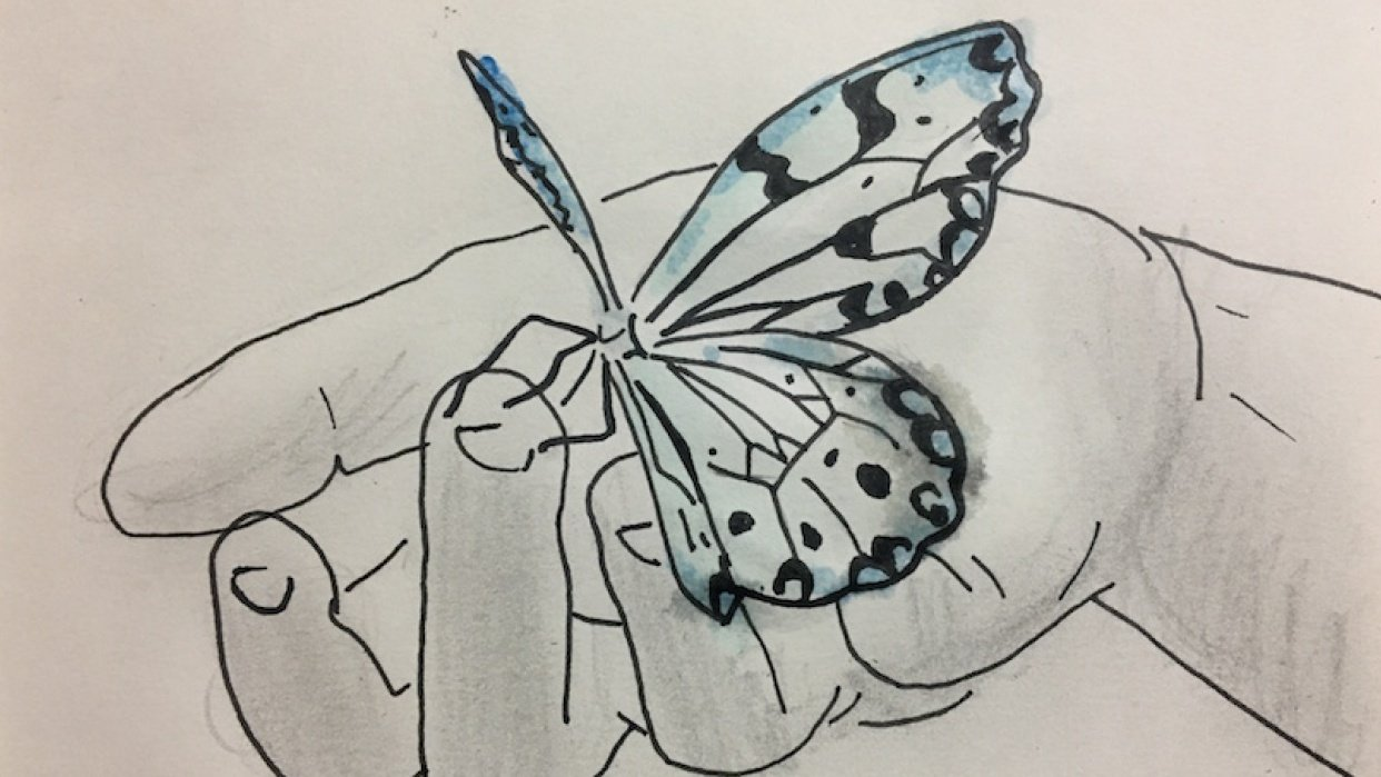 Beginner Practice - student project