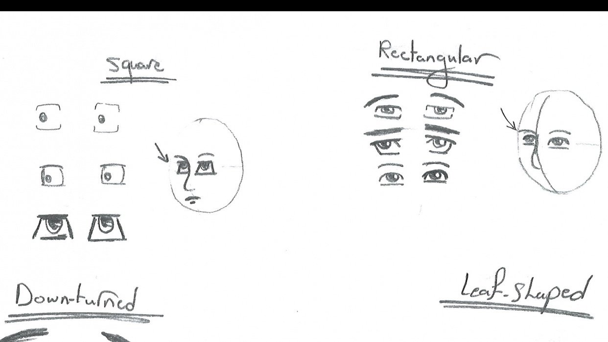 the eyes in 3/4 position - student project