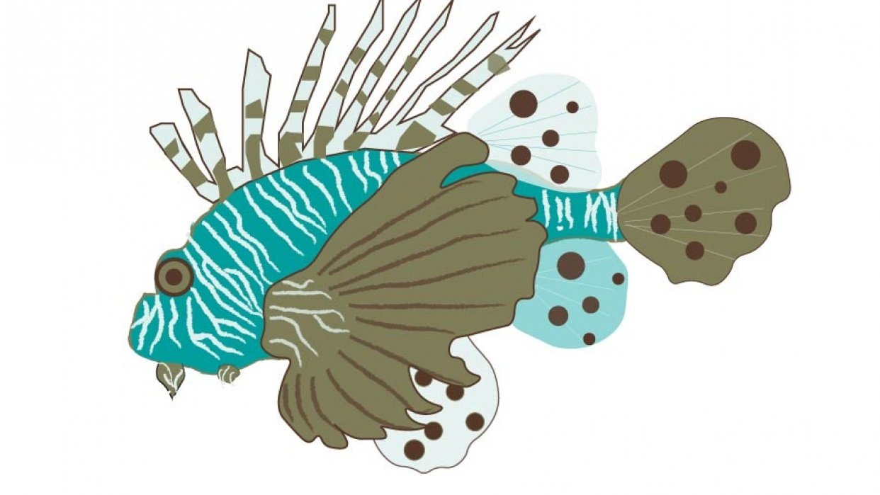 Under the sea: Lion Fish - student project