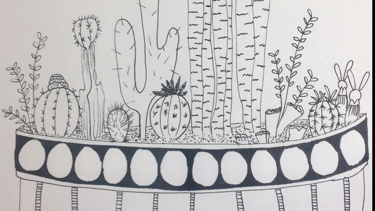 My Cactus practice :) - student project