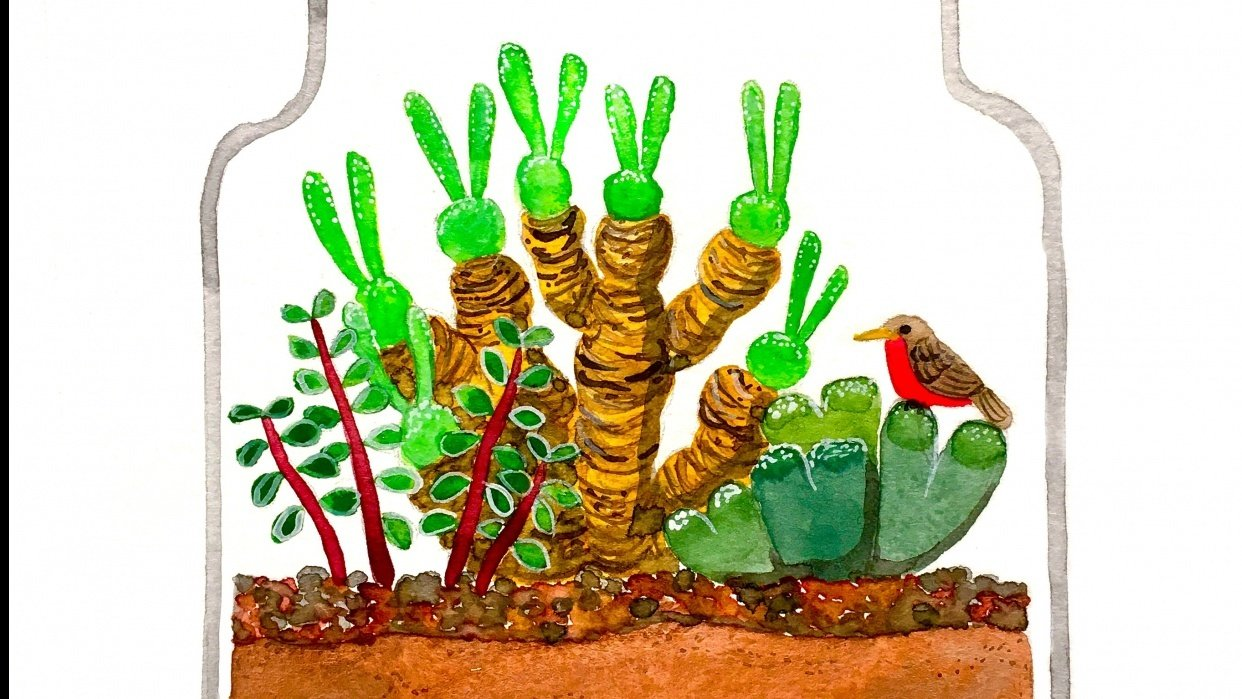 Succulent Terrarium - student project