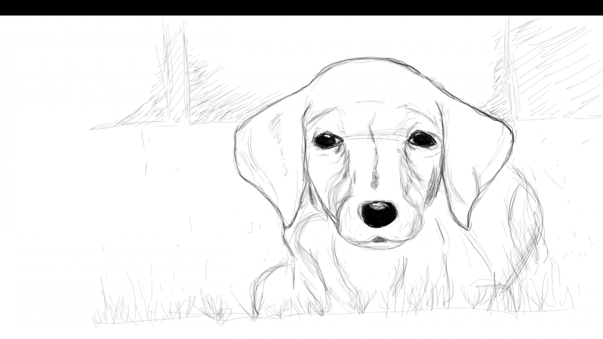 Puppy - student project