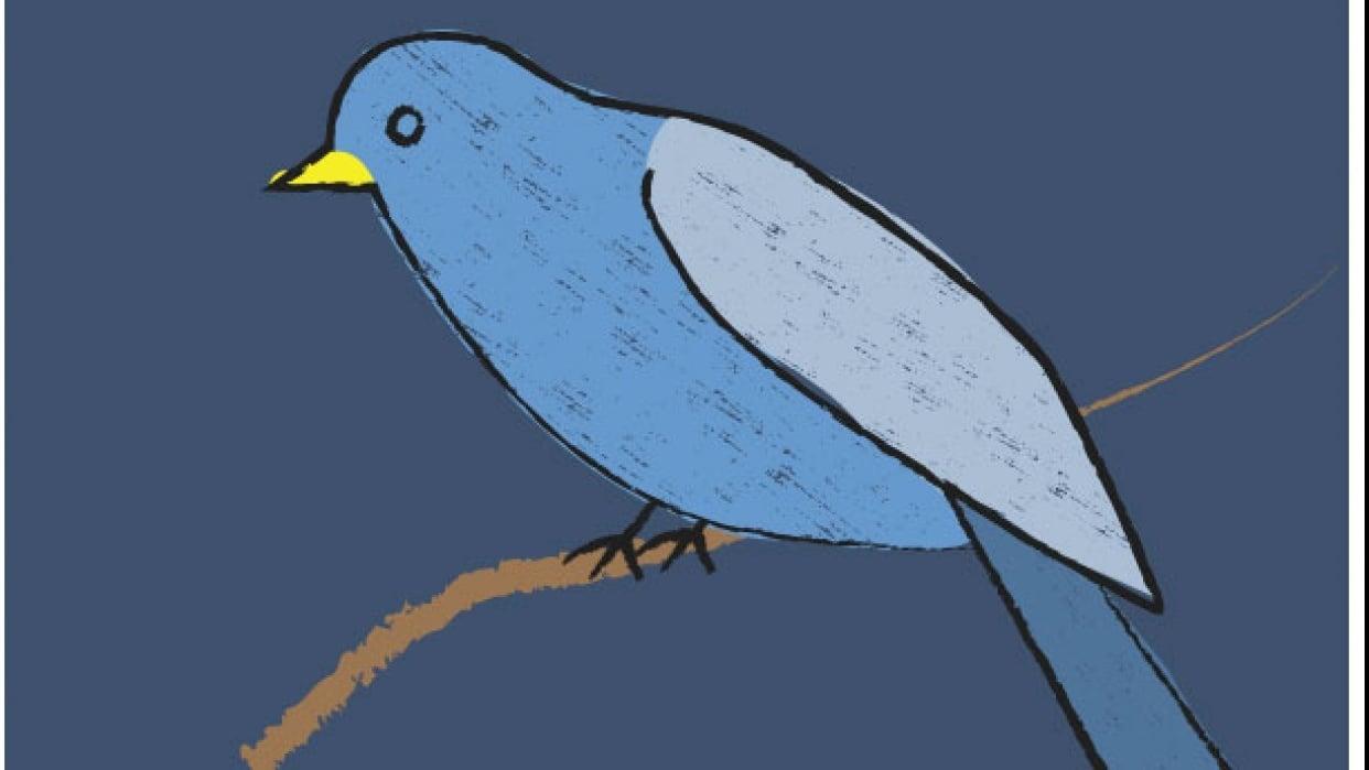 Textured bird - student project