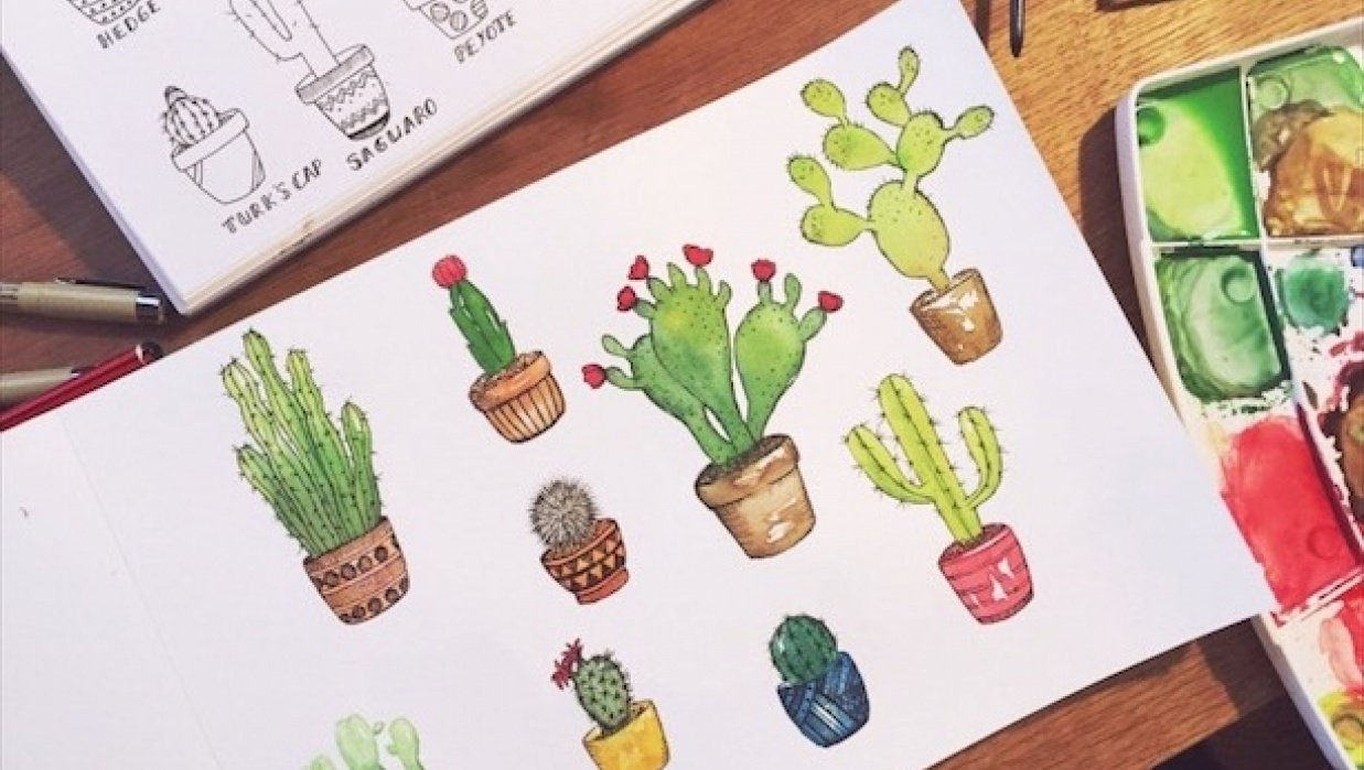 Cactus pen with watercolours - student project