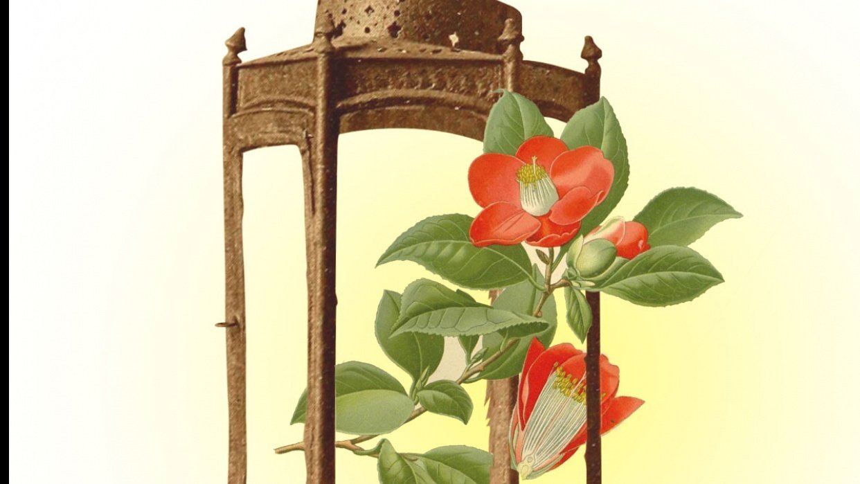 Illuminating Flowers - student project