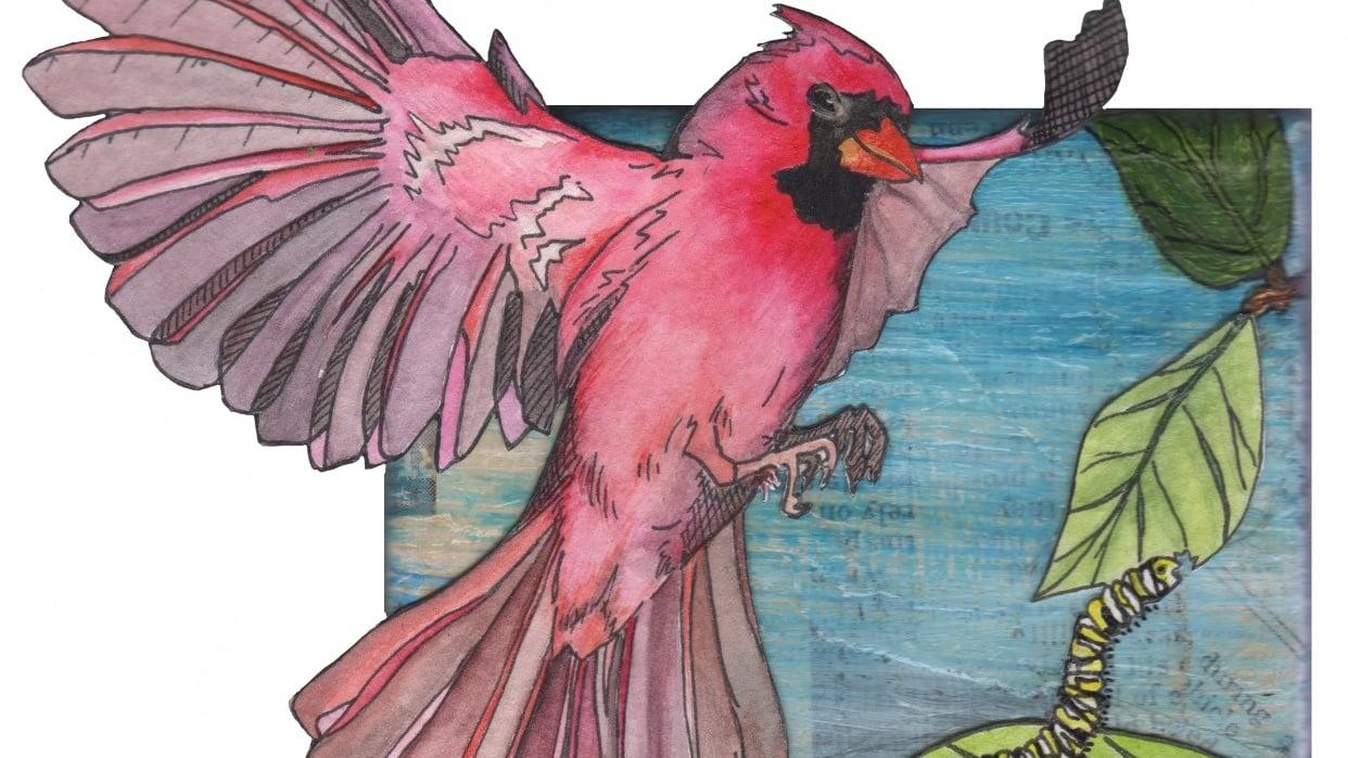 Cardinal - student project