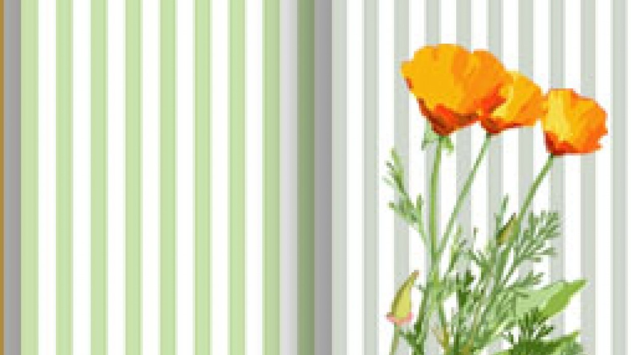 Cal Poppy Stripe - student project