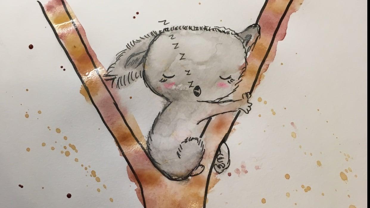 sleeping koala, shy rhino - student project