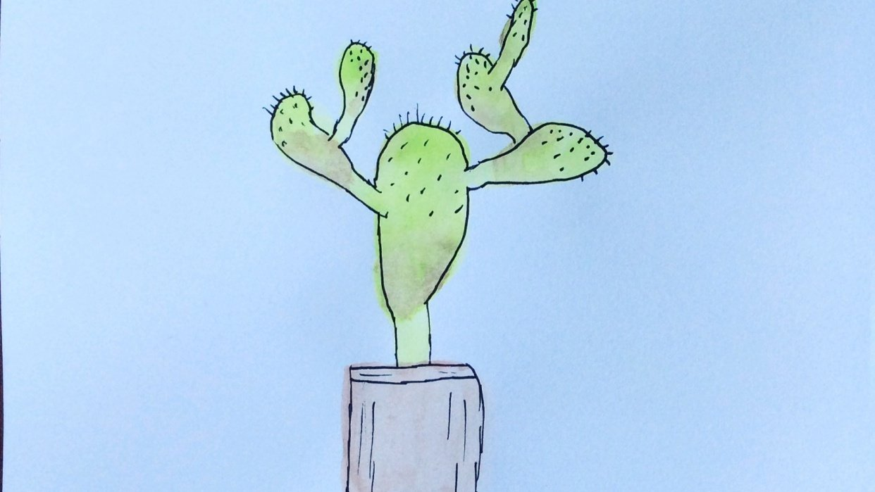 My cactus - student project