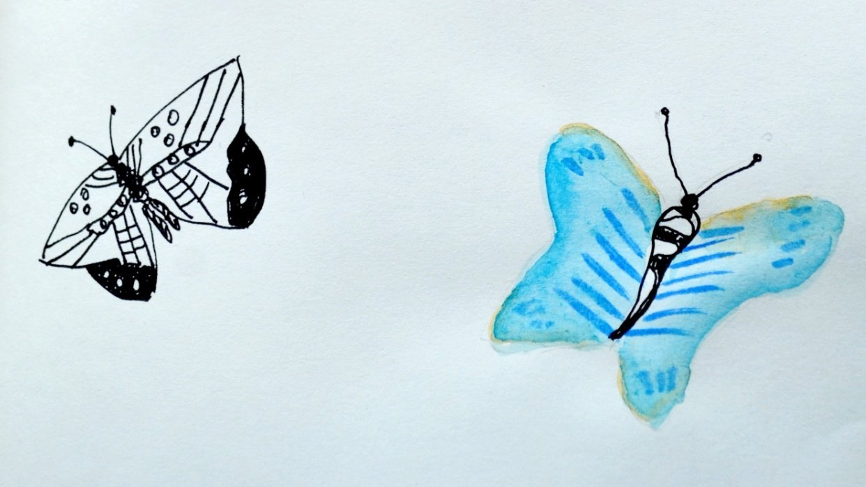 daily art practice. butterflies - student project