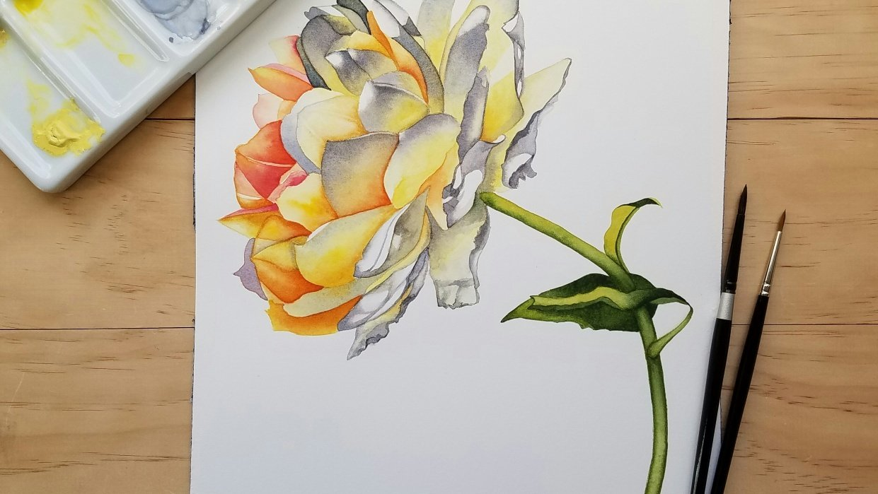 Jean's Rose - student project