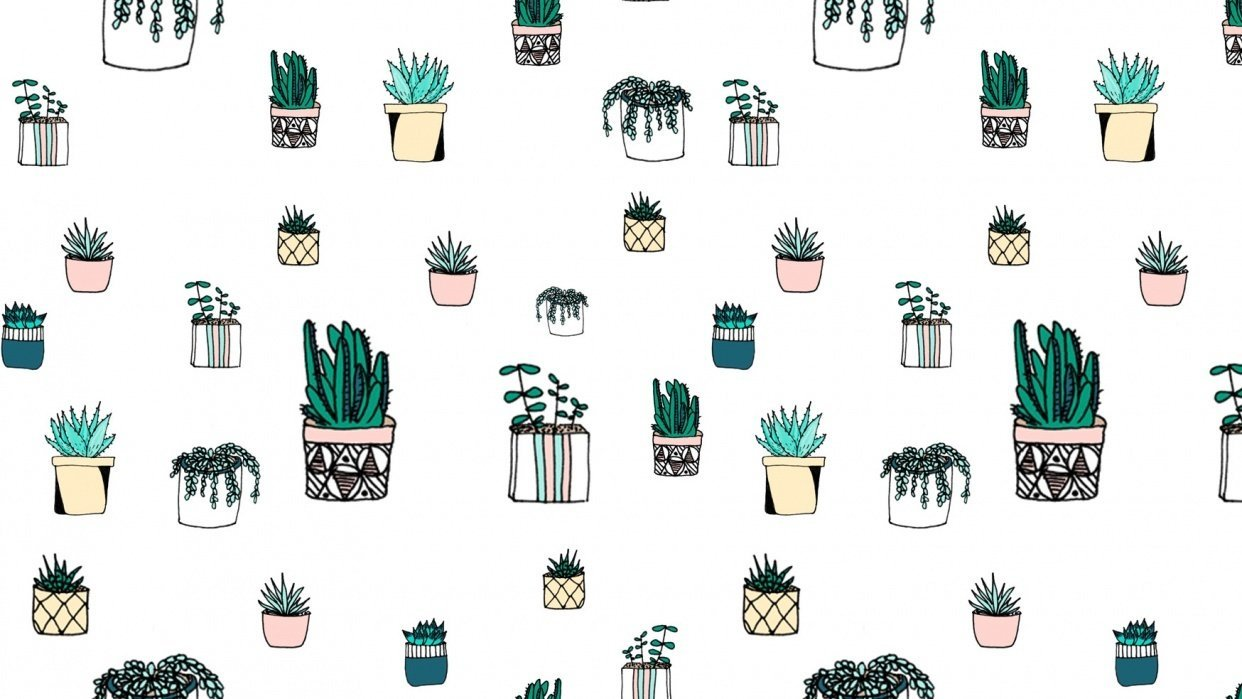 Cactus pattern - student project