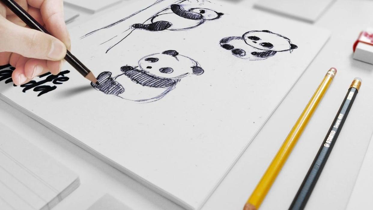 Panda illustrations - student project
