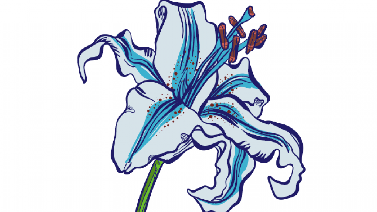 Lili Flower Inking & Coloring Easy!  - student project