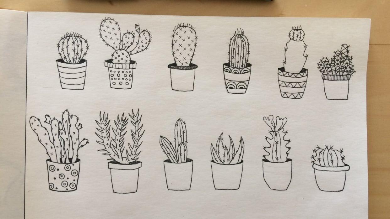Cactus & Succulent Edition - student project