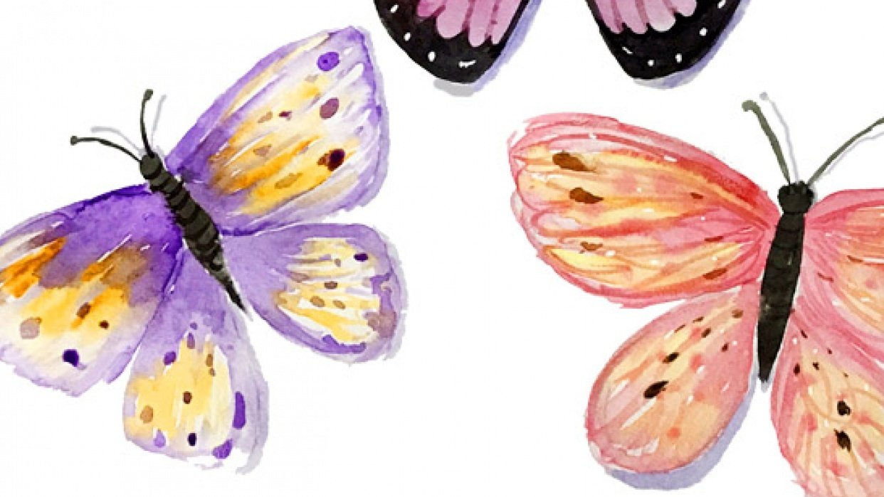First Watercolour Butterflies - student project