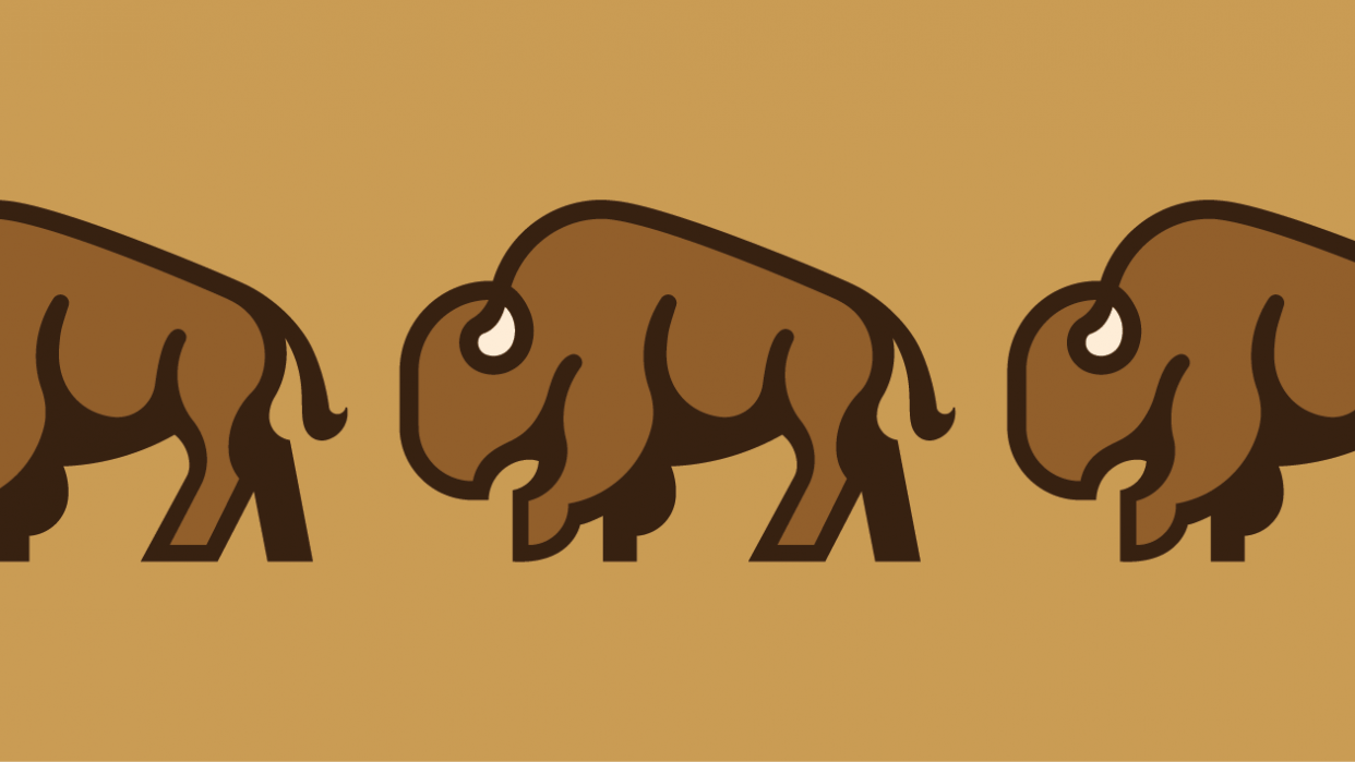 Bison Logo - student project