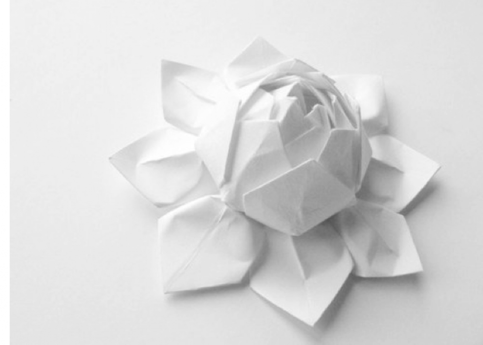 Flower collage - student project