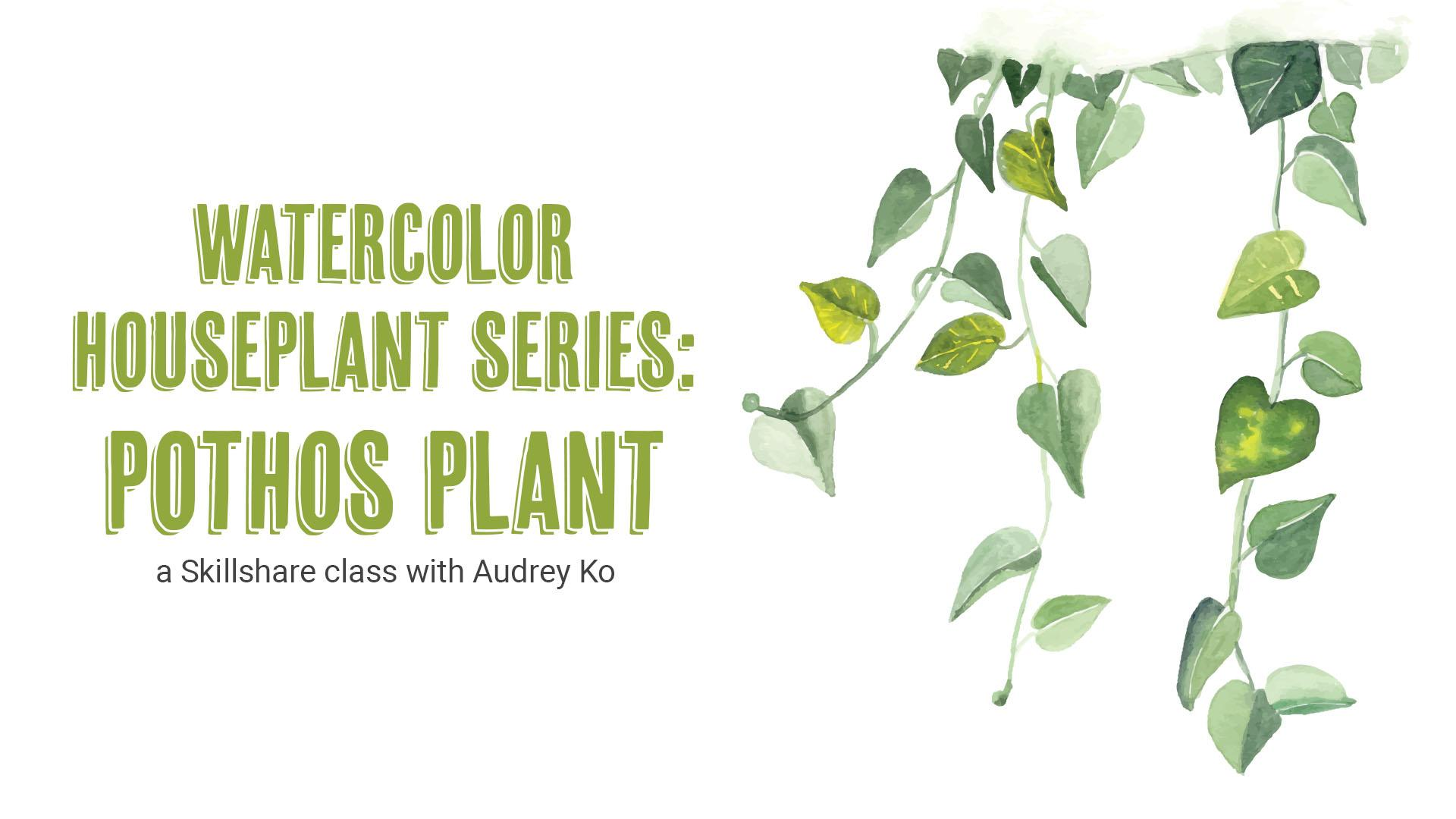 How To Paint Watercolor Houseplants Pothos Plant Audrey Ra Skillshare