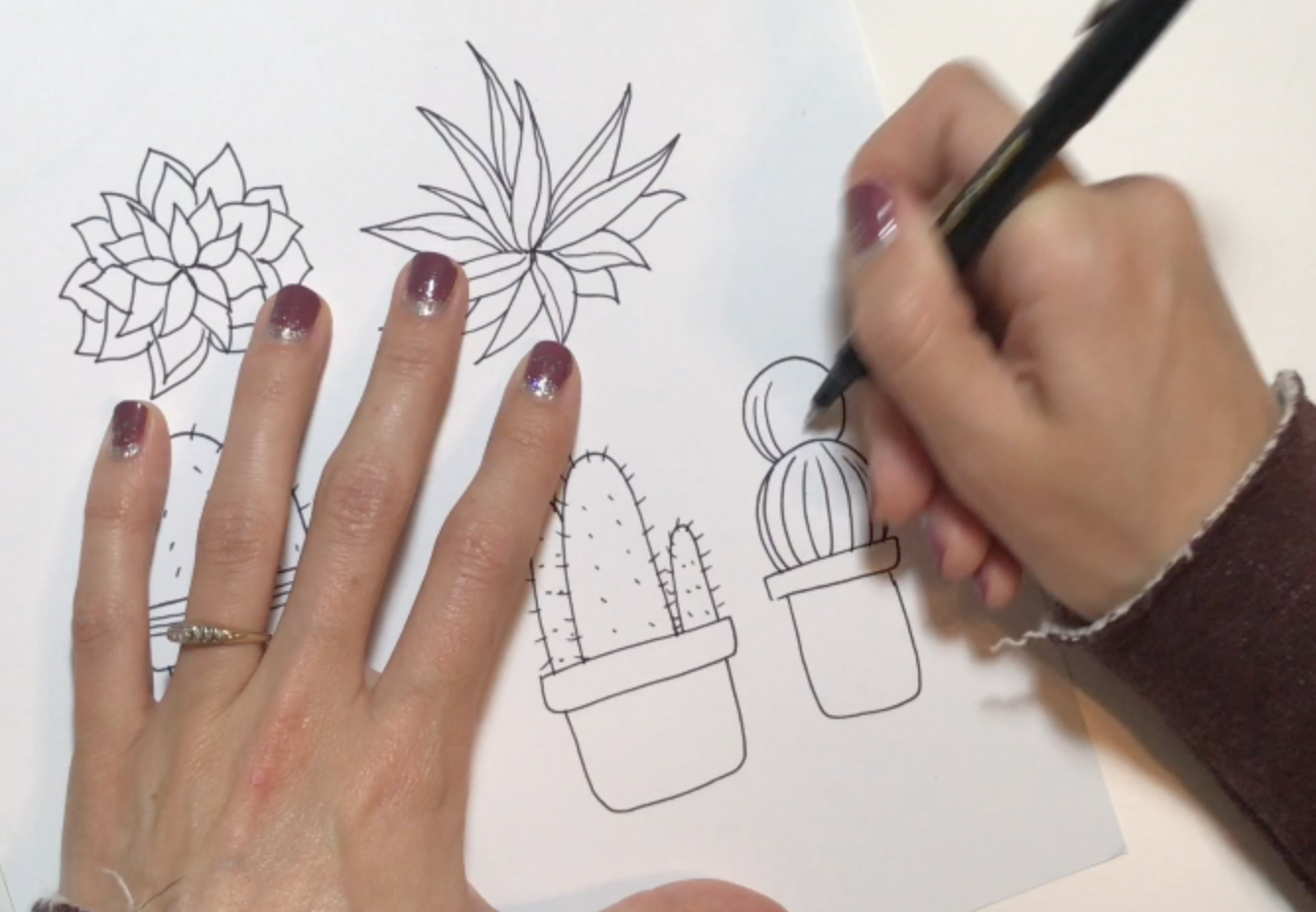 Drawing Lines With Core Graphics : Botanical line drawing peggy dean skillshare