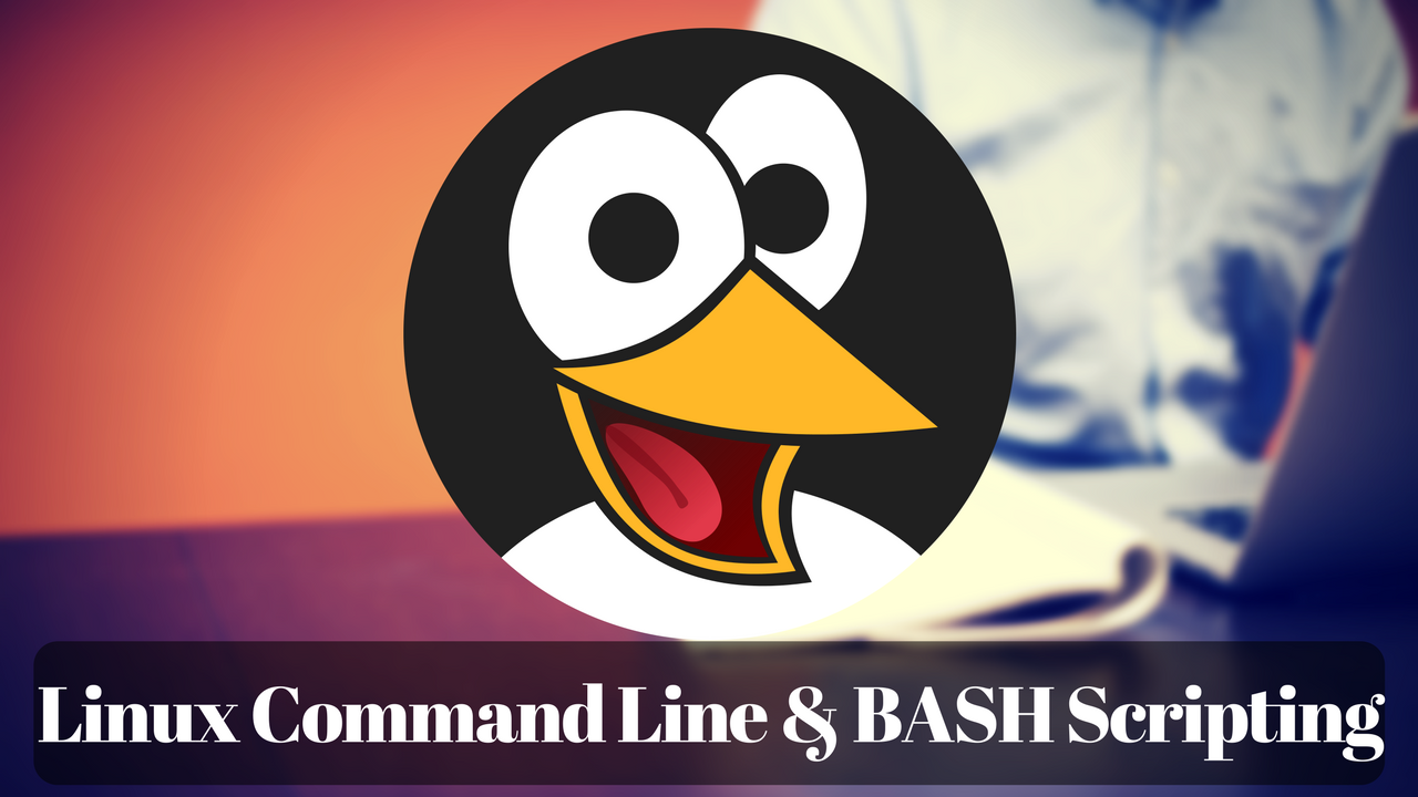Linux Command Line Interface and BASH Scripting | Capsule Trainings