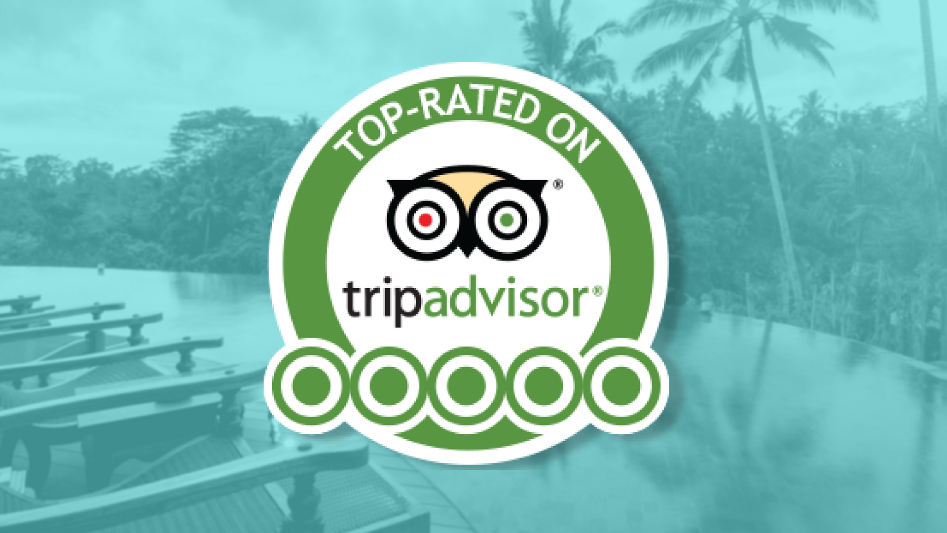Do You Want To Learn How To Dominate TripAdvisor And Increase Your  Hospitality Business Profits?