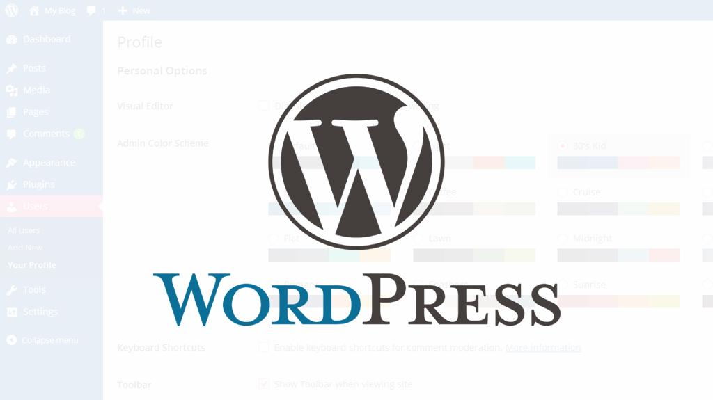 Create A Professional Wordpress Blog Yourself- DIY ...
