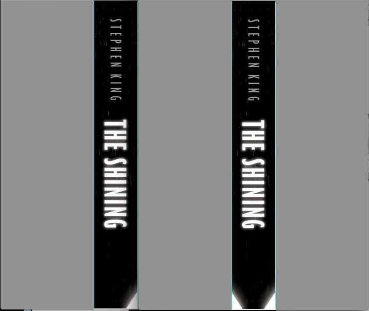 the shining book summary