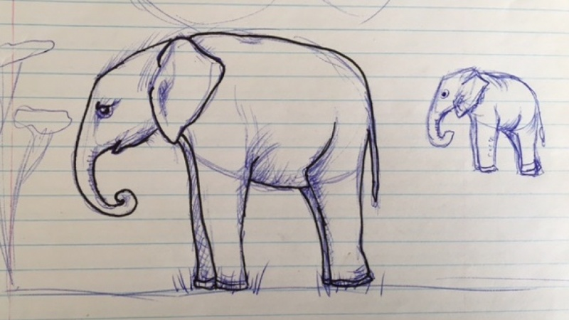 Elephant doodle from following along