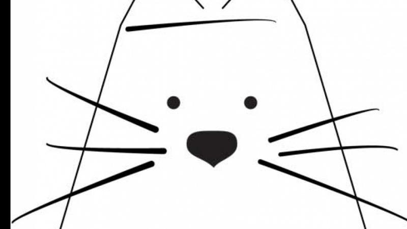 Cat Project