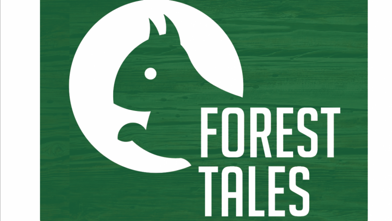 Forest Tales - Golden ratio grid