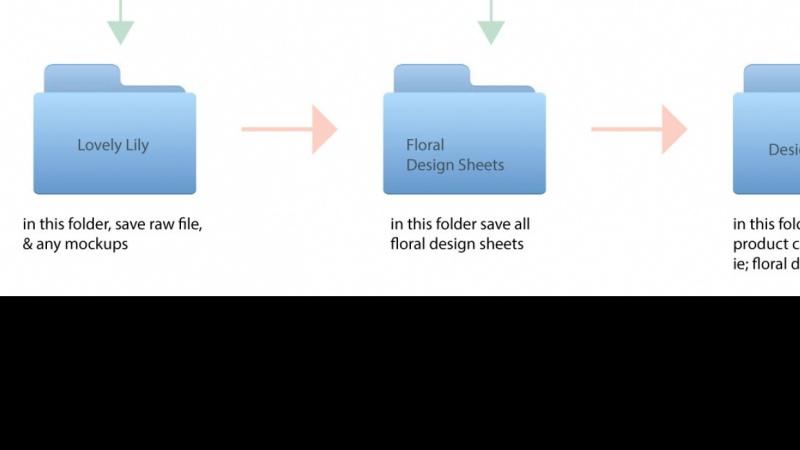File Organization - Visual template