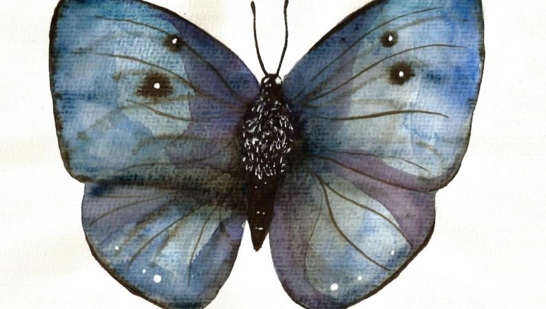 My butterflies :)