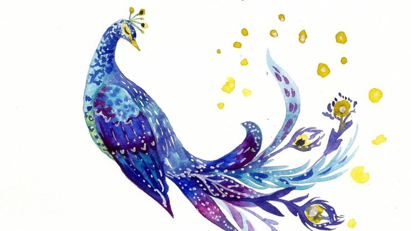 Whimsical Birds Sample Project