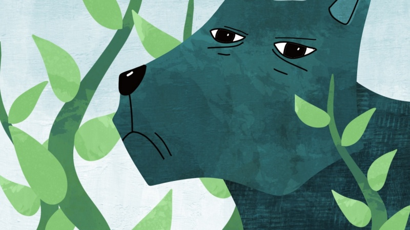 The green dog.