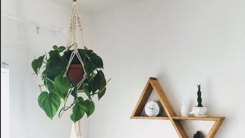 My first macrame plant hanger!