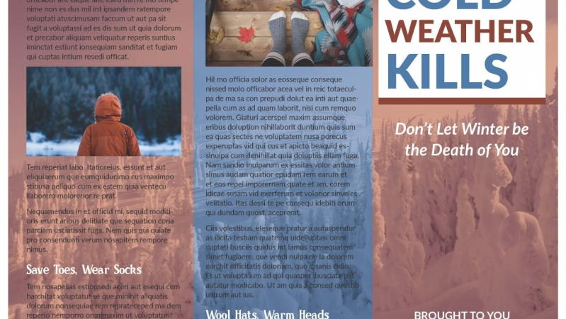 30 Days 30 InDesign Classes - Class 1 - Cold Winter Kills Trifold Flyer